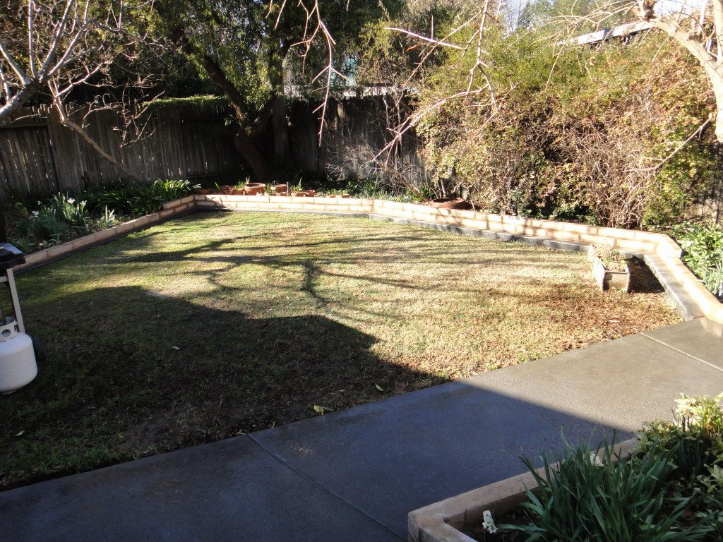 Mow Strips And Fences Buzz Custom Fence